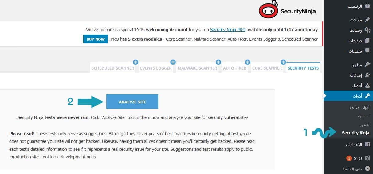 Security Ninja Analyze Site